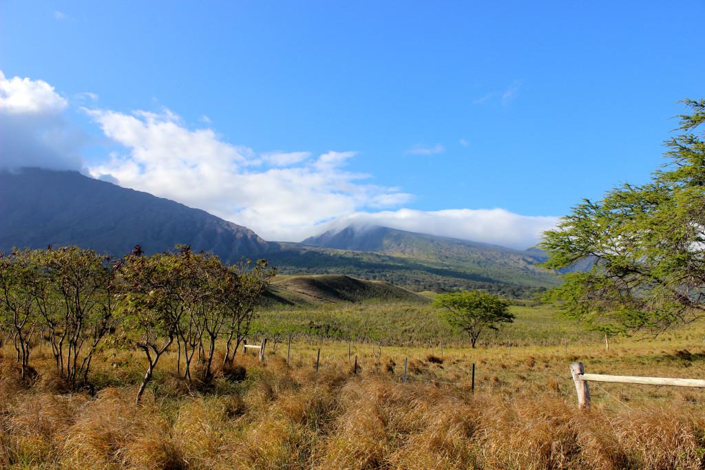 Road to Hana Recap | Brighterdarling.com