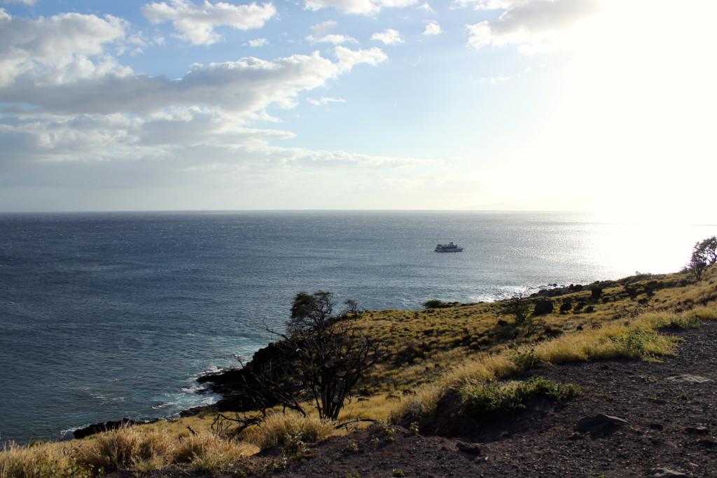 Honeymoon in Maui