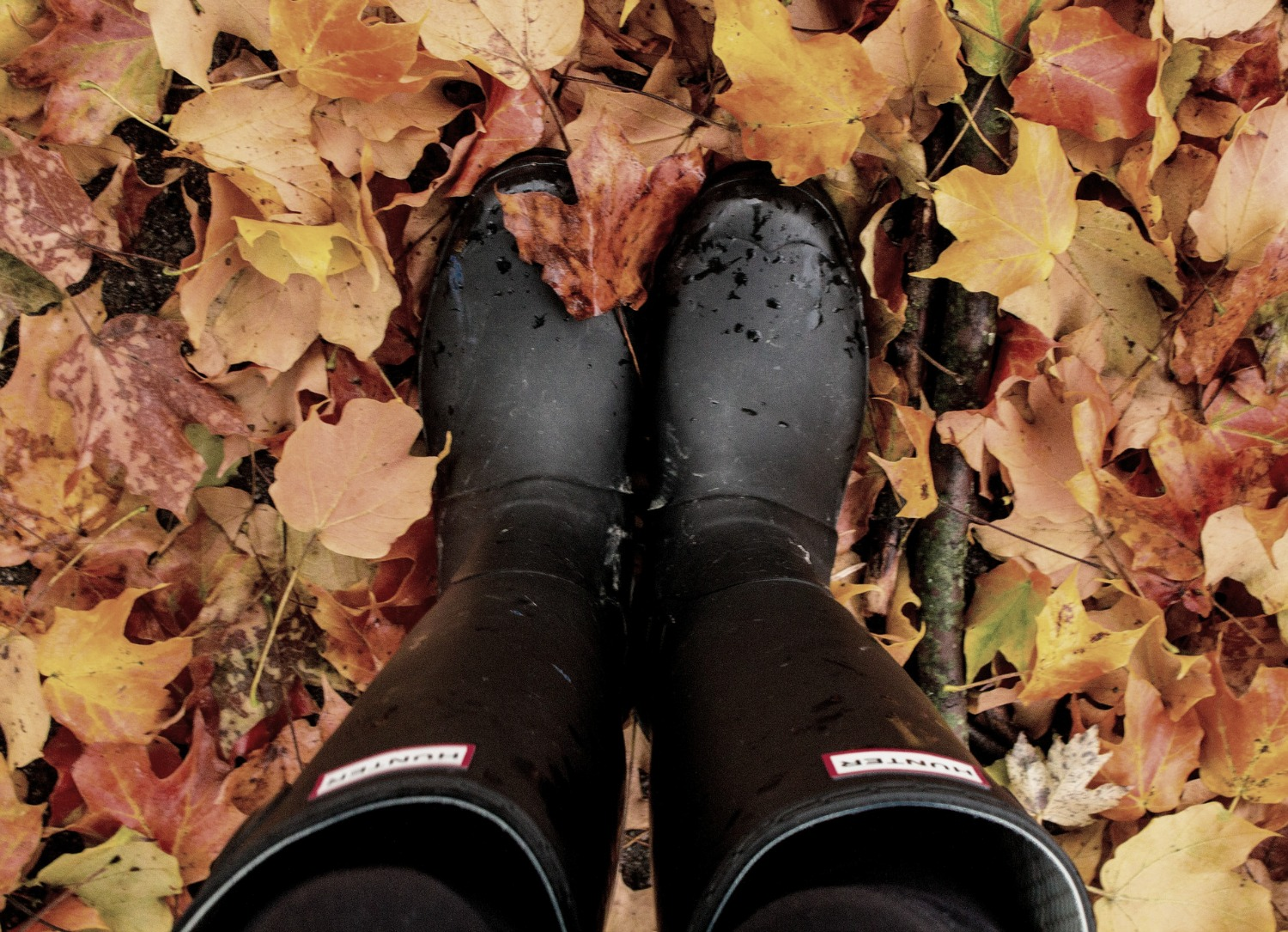 Fall Favorites by Beauty Blogger Brighter Darling | NJ Beauty Blogger | Philadelphia Beauty Blogger | Black Hunter Boots in Fall