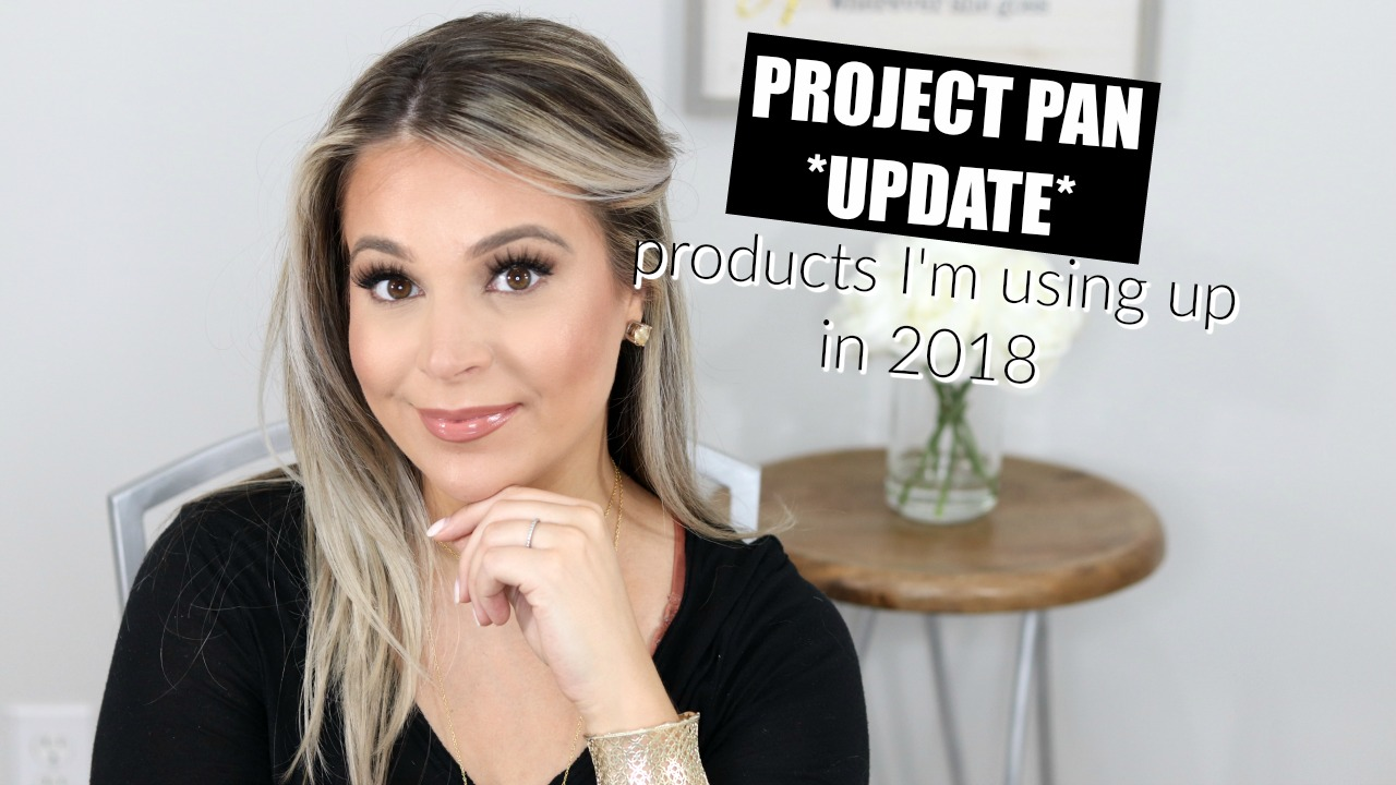 Project Pan 6 Month Update Progress | Brighter Darling Blog YouTube Channel